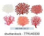 beautiful hand drawn botanical... | Shutterstock .eps vector #779140330
