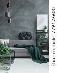 dark green blanket on grey sofa ... | Shutterstock . vector #779176600