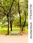 bench is under two trees in a... | Shutterstock . vector #779245750