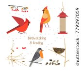 Birdwatching  Bird Feeding Ico...