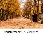 paris  france   october 05 2017 ... | Shutterstock . vector #779440324