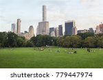 meadow or lawn in big city ... | Shutterstock . vector #779447974