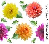 seamless  pattern of dahlia... | Shutterstock . vector #779486278