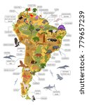 south america flora and fauna... | Shutterstock .eps vector #779657239