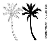 palm tree silhouette icons on...   Shutterstock . vector #779681158