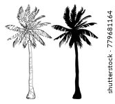 palm tree silhouette icons on... | Shutterstock . vector #779681164