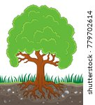 tree with roots theme image 3   ... | Shutterstock .eps vector #779702614