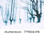 mysterious snowy forest in the... | Shutterstock . vector #779836198