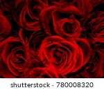 Stock photo beautiful red roses 780008320