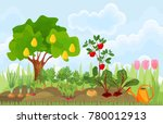 kitchen garden or vegetable... | Shutterstock .eps vector #780012913