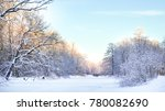 a frosty sunny day in nature. | Shutterstock . vector #780082690