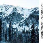 Small photo of Winter walk in mountains of Zailiysky Ala Tau