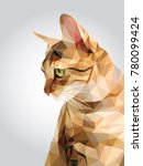 Tabby brown cat green eyes isolated on white background, red orange kitty low polygon, animal crystal design illustration, modern geometric graphic. | Shutterstock vector #780099424