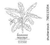 banana  tree vector...   Shutterstock .eps vector #780115354
