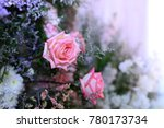 pink rose for background  ... | Shutterstock . vector #780173734