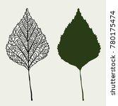 birch leaf illustration outline ... | Shutterstock .eps vector #780175474