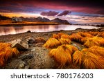 beautiful landscape of... | Shutterstock . vector #780176203