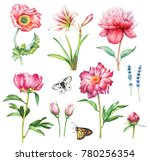watercolor collection of hand... | Shutterstock . vector #780256354