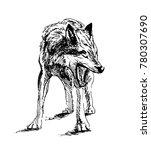 hand sketch wolf. vector... | Shutterstock .eps vector #780307690