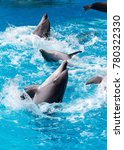 dolphins swimming in the clear... | Shutterstock . vector #780322330