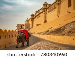 tourists enjoy elephant ride at ... | Shutterstock . vector #780340960