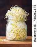 Small photo of Fresh green seed sprouts of alfalfa in jar, healthy diet and clean eating concept.