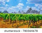 traditional white trulli houses ... | Shutterstock . vector #780364678
