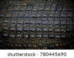 crocodile skin texture or...   Shutterstock . vector #780445690