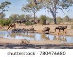 Talamati Waterhole During A...