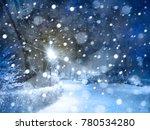 winter night snowy park. | Shutterstock . vector #780534280