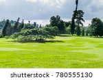 peradeniya royal botanical... | Shutterstock . vector #780555130