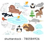 an arctic animal illustration... | Shutterstock .eps vector #780584926