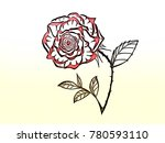 beautiful rose bouquet with... | Shutterstock . vector #780593110