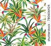 desert plant cactus tropical... | Shutterstock .eps vector #780606424