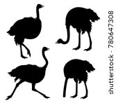 Set Of Ostrich Silhouettes ....