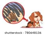 dog tick sitting on skin under... | Shutterstock .eps vector #780648136