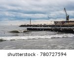 seagulls on the black sea  poti ... | Shutterstock . vector #780727594