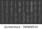 big set of vertical hand drawn... | Shutterstock .eps vector #780808510