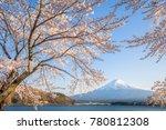 sakura cherry blossom and mt.... | Shutterstock . vector #780812308
