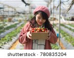 young asian girl in strawberry...   Shutterstock . vector #780835204