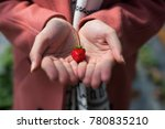 young asian girl in strawberry...   Shutterstock . vector #780835210