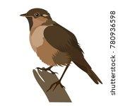 vector flat illustration of... | Shutterstock .eps vector #780936598
