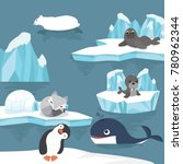 arctic animals  cartoon... | Shutterstock .eps vector #780962344