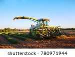 valensole  france    july 2012. ... | Shutterstock . vector #780971944