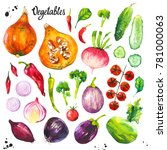 watercolor illustration with... | Shutterstock . vector #781000063
