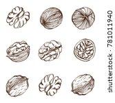 set of walnuts from different... | Shutterstock .eps vector #781011940