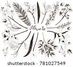 collection of floral design...   Shutterstock .eps vector #781027549