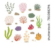 seaweed  corals and stones.... | Shutterstock .eps vector #781088296