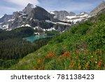 Wildflowers  Mt. Gould  Glacie...