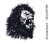 hand drawn lion.lion vector...   Shutterstock .eps vector #781144789
